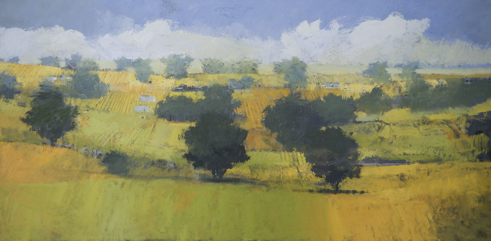 Tuscan-Hills-40x80-Oil-on-Canvas-$14000(-incomplete)